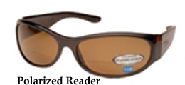 Polarized Readers